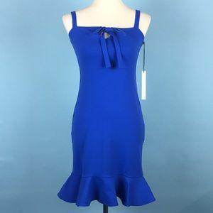 Susana Monaco Alpine Ruffle Hem Mini Dress